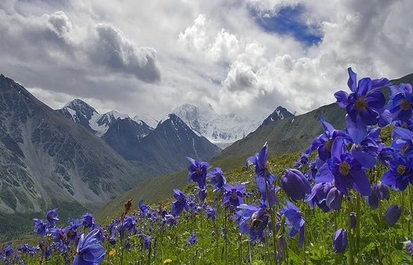 The Mountains of Altai