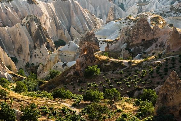 A wonderful vineyard in Cappadocia