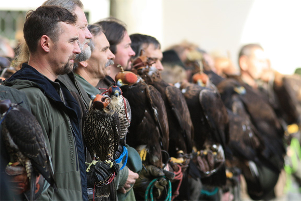 43th Falconry Meeting in Opočno