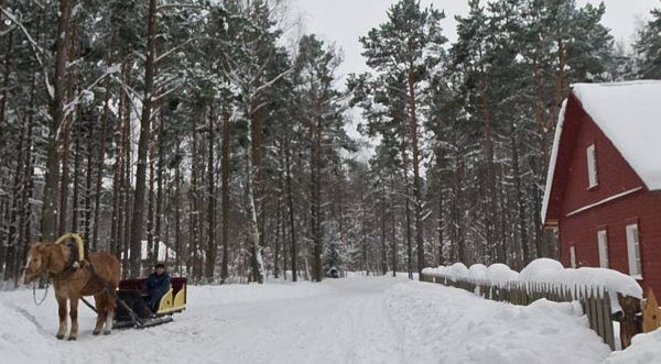 Estonian Open Air Museum in the winter.
