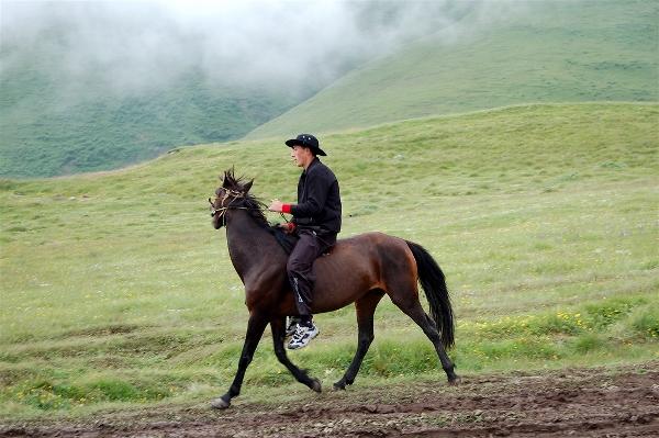 Georgian cowboy Kazbegi, Georgia