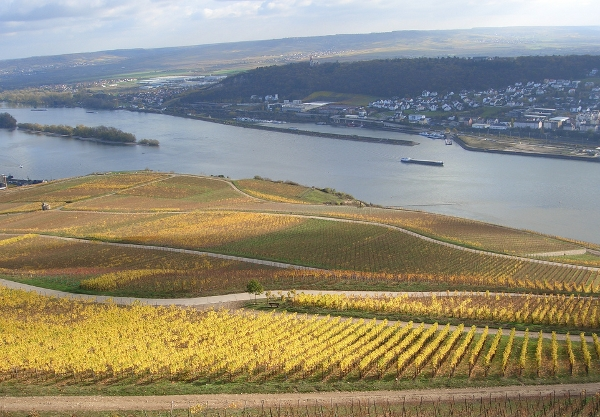 Rhine River Valley