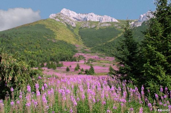 Slovakia, Belianske Tatry Mts. - Courtesy Peter Fenďa