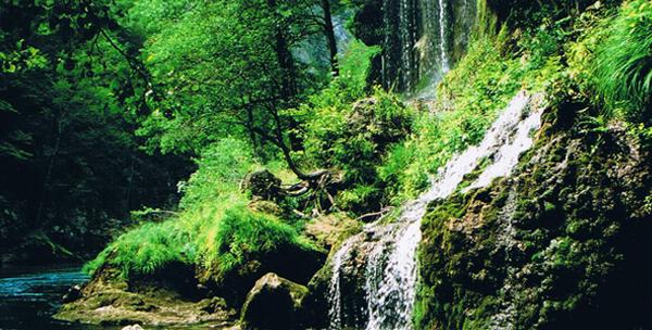 The Tara and its surroundings.