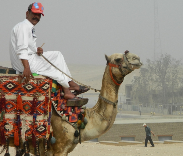Camels and all, Egypt is Egypt still