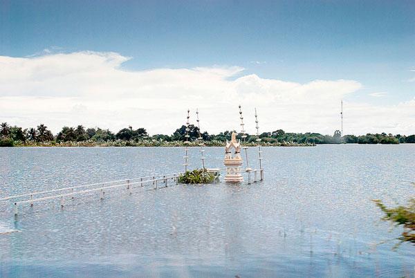 Flooded land in Ayutthaya