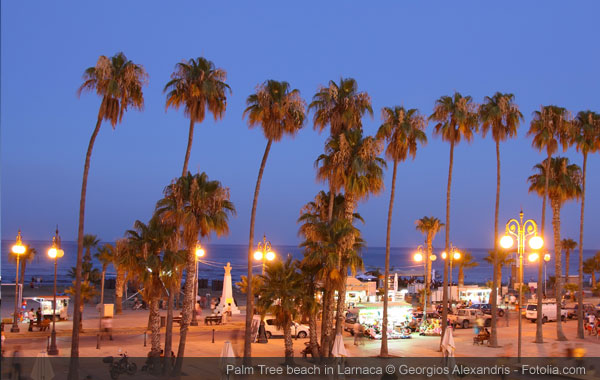 Palm Tree Beach of Larnaca at Dusk