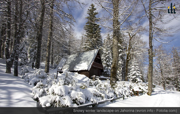 Snowy winter landscape on Jahorina mountain near Sarajevo