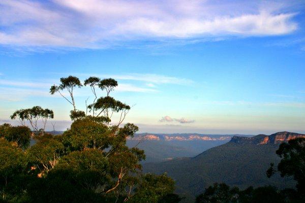 Trekking Blue Mountain