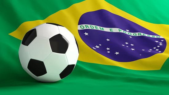 Viva Brazil! A Guide to the 2014 FIFA World Cup