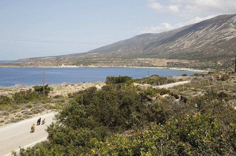 Crete's Famous But Remote Treasures: Elafonisi Beach