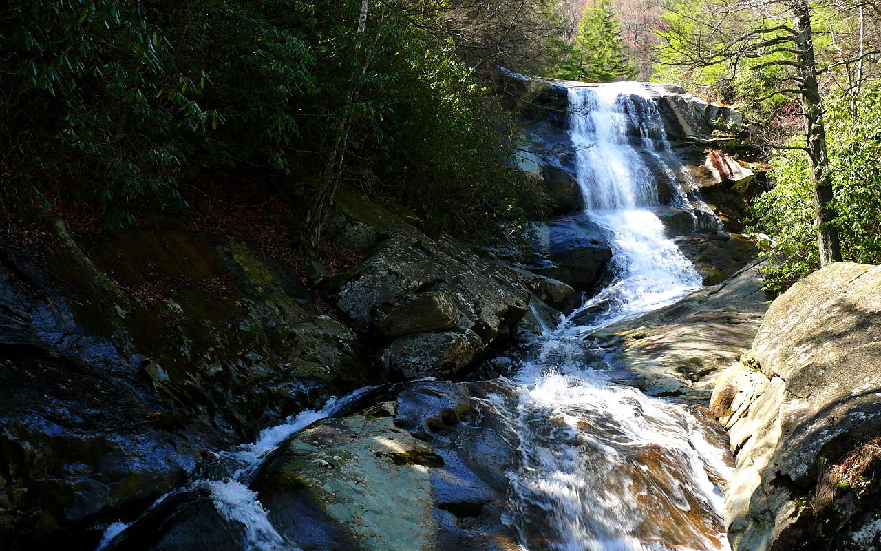 Pisgah National Forest North Carolina - courtesy Wikipedia