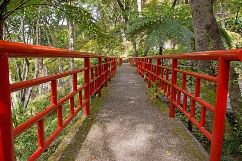 Monte Palace Tropical Garden© clombumbus