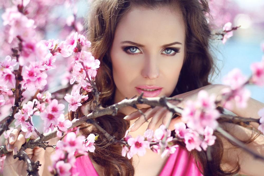Budapest cherry blossoms