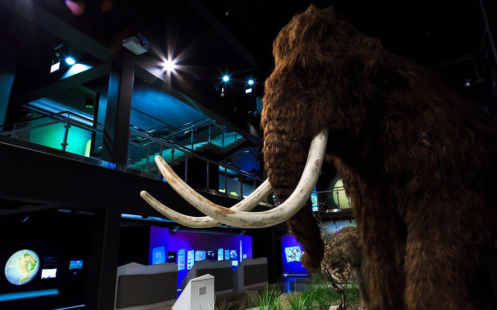 Jääaja Keskus - Ice Age Centre