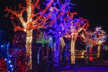 The Christmas Story in Čazma - colored lights make this a wonderland