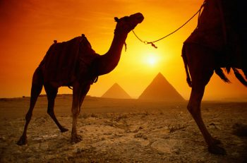 Egyptian tourism chiefs are desperate for tourists to come back