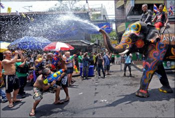 Watch out for the elephants in Songkran!