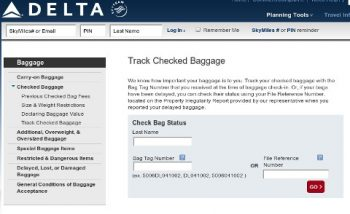 Delta baggage tracker