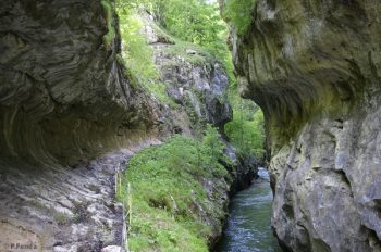 Romania's Godeanu Mts.