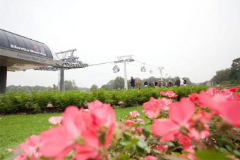 Sneakpreview Floriade Park - cable cars.