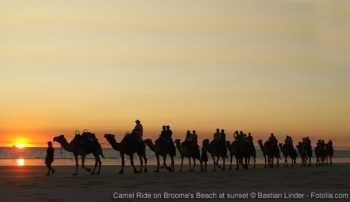 Camel Ride on Broome's Beach at sunset