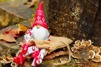 Christmas in Bosnia and Herzegovina