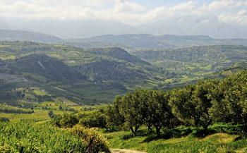 Iliostasio Farm