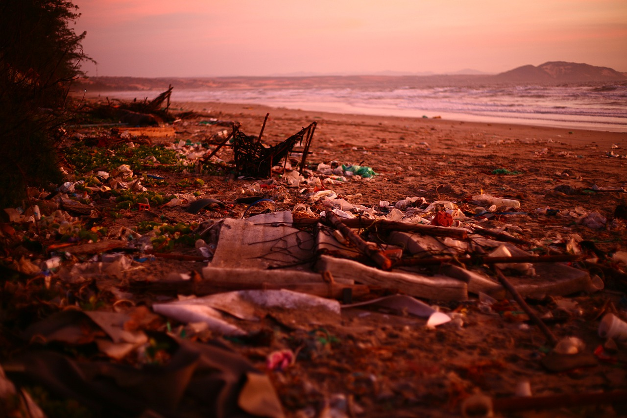The world's beaches showing signs of destruction