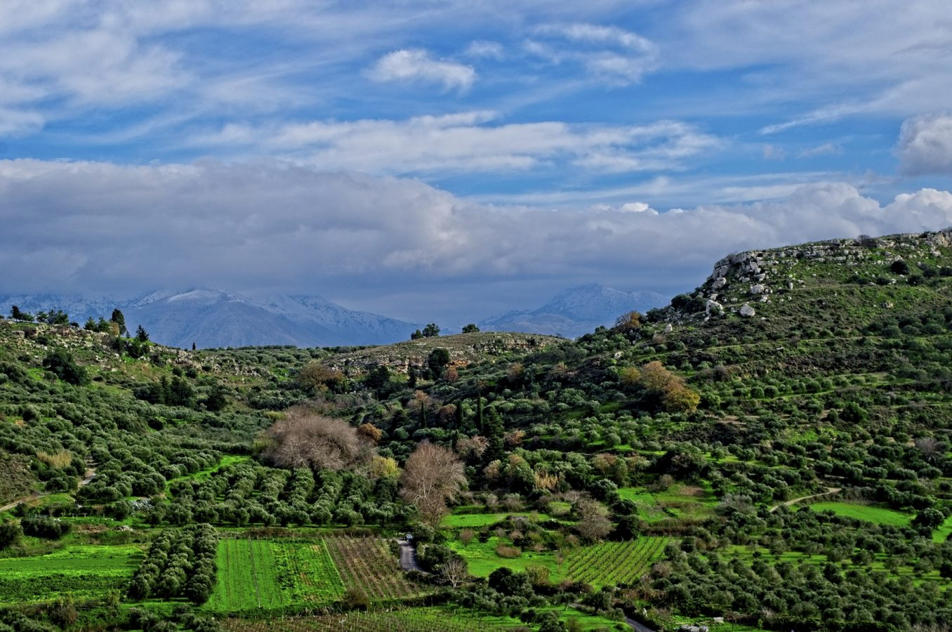The valley beneath Galatas Minoan Palace
