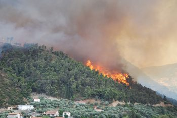 Greece forest fires