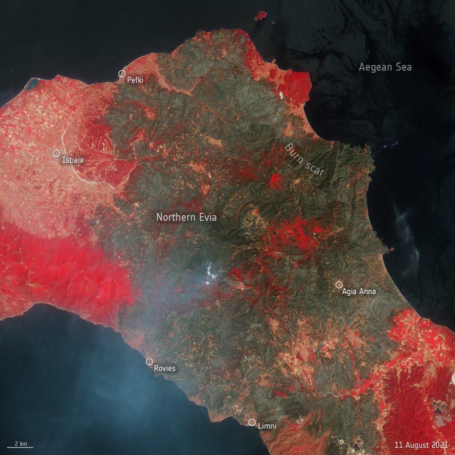 Evia Island fire destruction